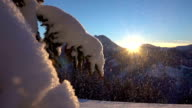 SLOW MOTION: Snowflakes falling on fresh white snow blanket at magical sunset video