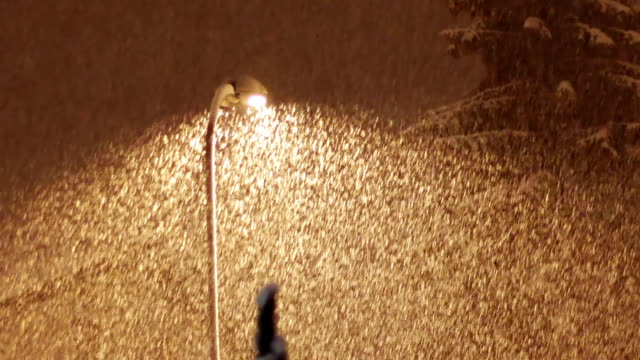 Snowing at night on the background of a lamppost video