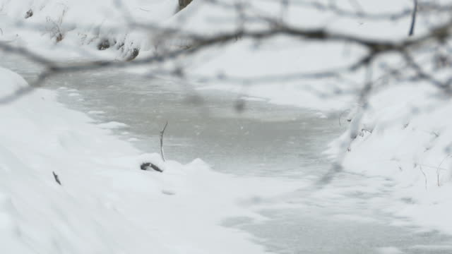 Snowing on Frozen Water video