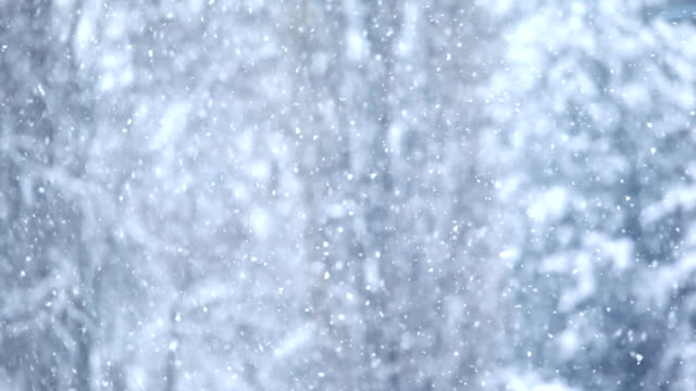 HD 1080: snowing video