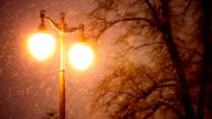 snowing winter night and shine lights video