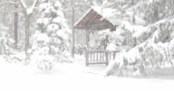 Snowing, with Gazebo in Woods video