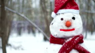 Snowman wearing red scarf and Christmas hat video