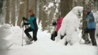 HD: Snowshoeing In The Forest video