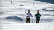 HD: Snowshoeing video