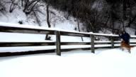 Snowshoeing video