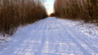 Snowy country road in forest video