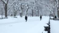 Snowy Day Literary Walk Central Park video