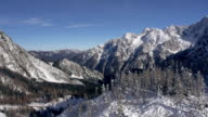 AERIAL: Snowy Julian Alps behind a hill with spruce trees video