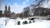 Snowy Landscape In Central Park video