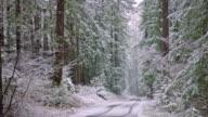 Snowy Landscape video