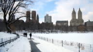 Snowy Path In Central Park video