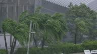 So heavy rain  in the city video