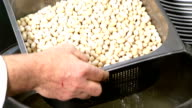 Soaking dried beans in water video