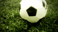 Soccer ball on the grass of football field video