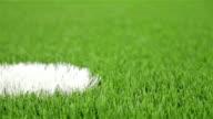 Soccer penalty point. Close-up, slider shot video