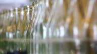 Soft Drink Bottling Line Close-up video