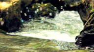 Soupbubbles Above Fast Flowing Water of River Stream video
