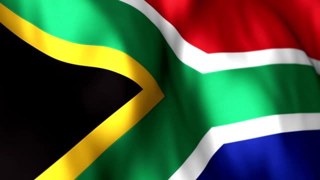 South African Flag High Detail  - Looping video