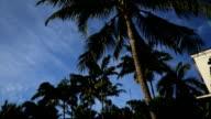 South Beach Miami home to luxury Art Deco hotels, Florida, USA video