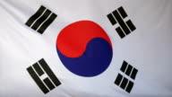 South Korea Flag real fabric close up video