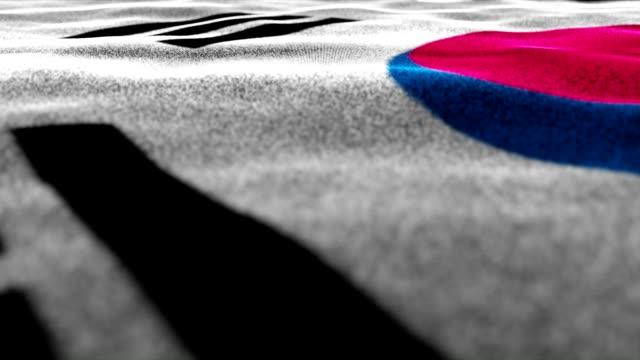 South Korea Flag, Textile Carpet Background, Movement Camera video