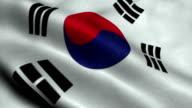 South Korea National Flag video