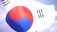 South Korean Flag High Detail video
