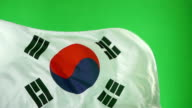 South Korean Flag on green screen, Real video, not CGI (South Korea) Super Slow Motion video