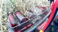Soybean harvest video