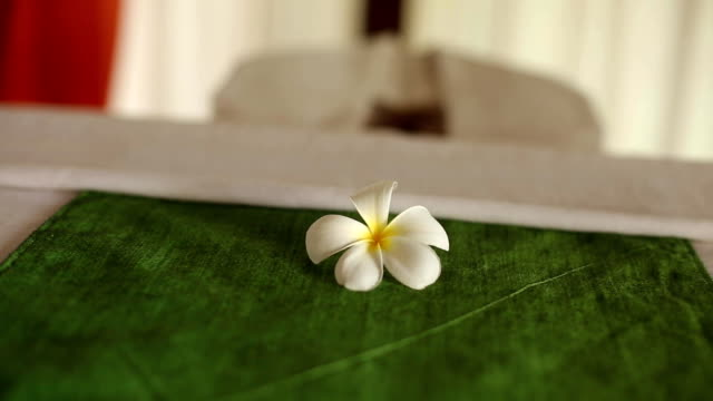 Spa accessories and decor: moisturizer, oils, candles, towels, flowers at tropical island spa therapy center on Maldives video