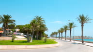 Spain, Costa Daurada, palm trees street video