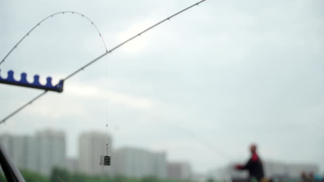 Spare feeder rod on sport fishing competition. The fisherman throws a fishing pole. Concept successful catch excitement and joy. Caught and released. Feeder close-up video
