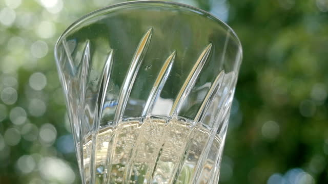 Sparkling Wine Bubbles in a Champagne Flute to Celebrate a Special Occasion video
