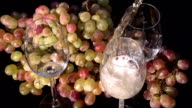 Sparkling Wine Pouring into a Glass video