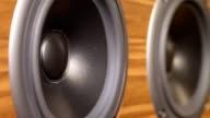 Speaker detail video