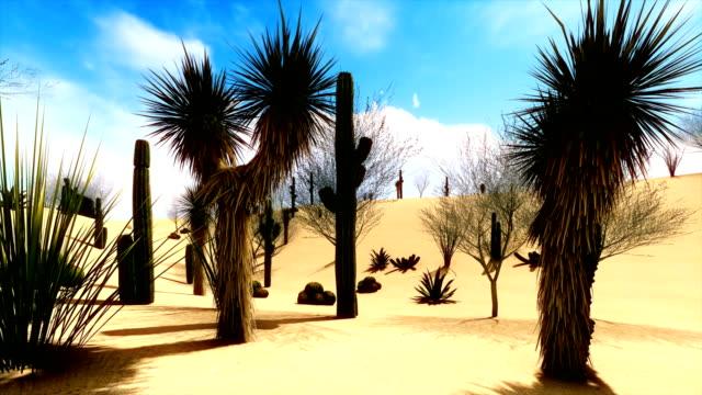 Specific vegetation on the desert video