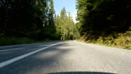 Speeding car trough fir forest video