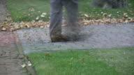 Speedy leafblower service. video