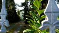 Spikes on fence, residential house in the background, pine trees, driveway, gate video