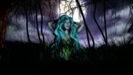spirit of forest video