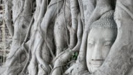 Spirituality, Love, Passion, Journey, Contemplation video