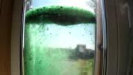 Spirulina green powder color in water video
