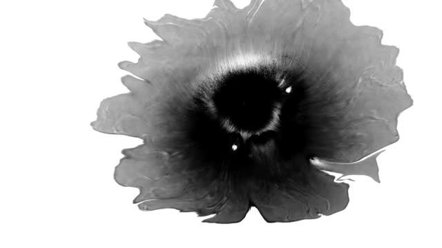 Splatters of Ink on wet paper video