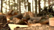 Splitting Wood video