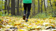 Sport Man jogging cross country running. Training and exercising outdoors when cross country running in inspirational autumn landscape. Sports Motivation. Slow Motion. video