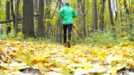 Sport Man jogging cross country running. Training and exercising outdoors when cross country running in inspirational autumn landscape. Sports Motivation. video