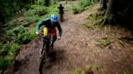 Sport Mountain-Bike Single-Trail Jump Drop Schoenbuch #1 video