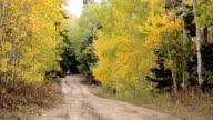 Sport recreation 4x4 ATV autumn golden mountain road video