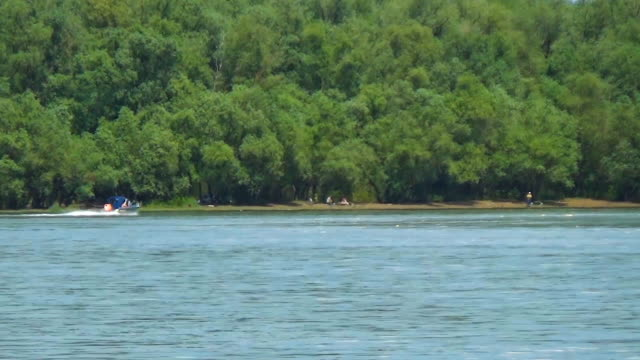A sports yacht quickly swims to the shore of a forest river video